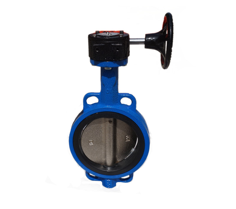 DI Wafer Type Butterfly Valve